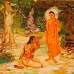 vita-buddha